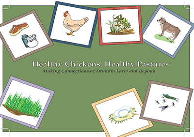 Healthy Chickens, Healthy Pastures