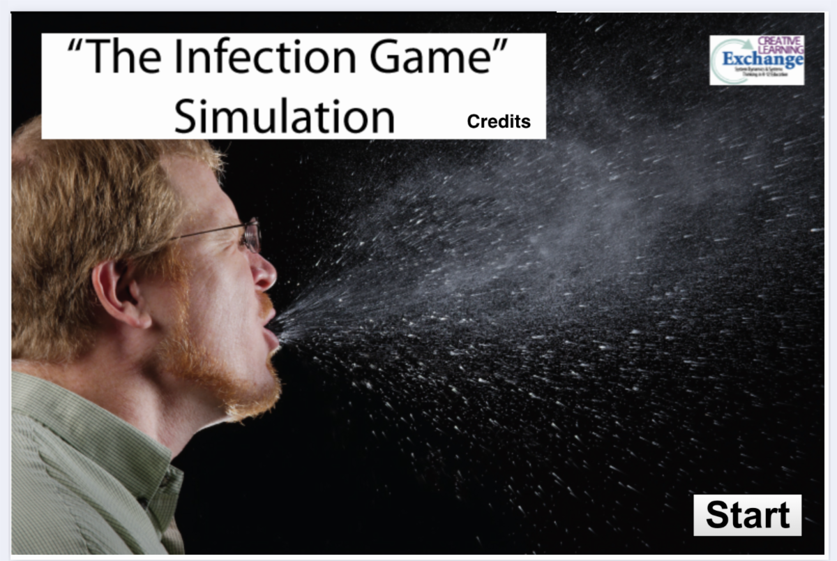 Infection Game